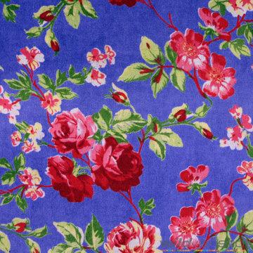 Fluweel rozen op koningsblauw
