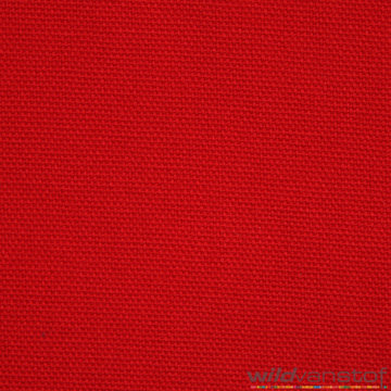Canvas - Rood 15