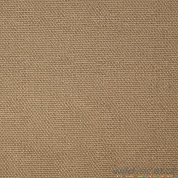Canvas - Beige 153
