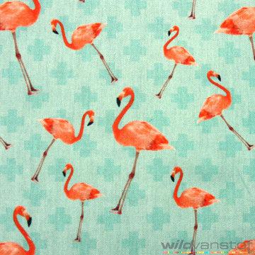 Flamingo's op turkoois