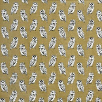 Canvas owl