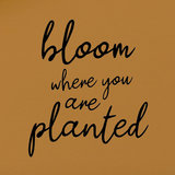 Applicatie flex - Bloom where you are planted_