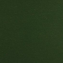 Sweater - Groen met spikkel