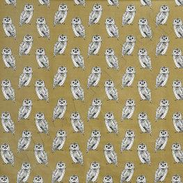 Canvas - Owl