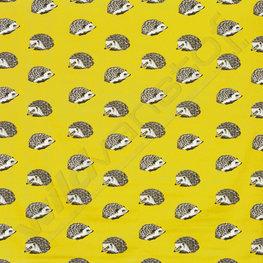 Canvas - Hedgehog