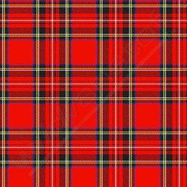 Lycra - Schotse ruit rood