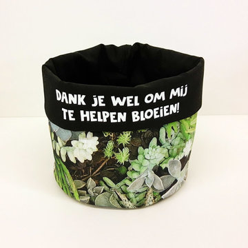 Stoffenpakket - Grote plant 2 (vetplantjes)