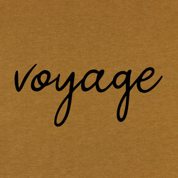 Applicatie flex - Voyage