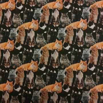 Katoen - Katten op donkergroen