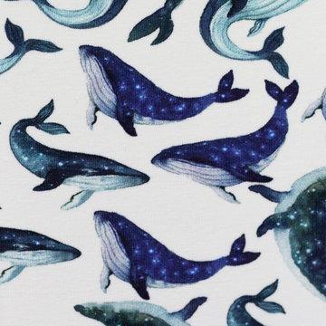 Tricot - Teveel walvissen bij elkaar