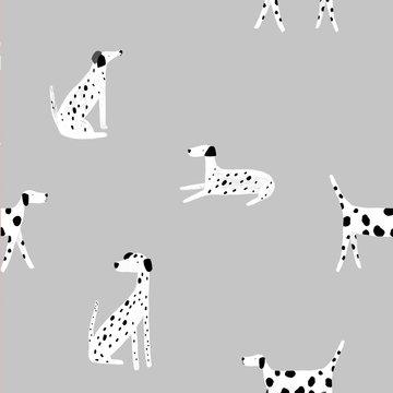 Softshell - Stiphonden op grijs