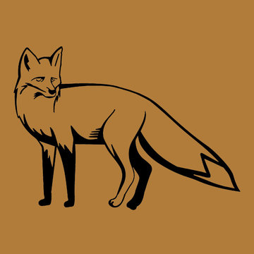 Applicatie flex - Fox