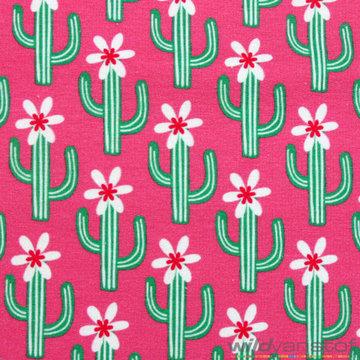 Coupon / Lichte sweater cactus op roze