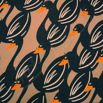 Grote zwanen bruin