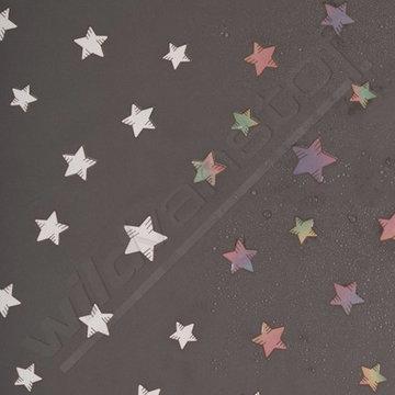 Softshell - Sterren op grijs (kleur effect)