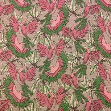 Stretch katoen - Papegaai roze-groen
