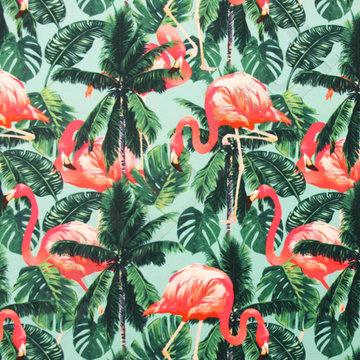 Lycra tropische flamingo's