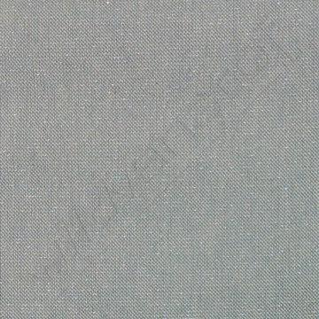 Canvas - Glitter Munt